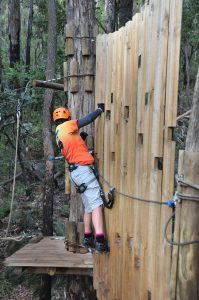 Dwellingup Run High Ropes